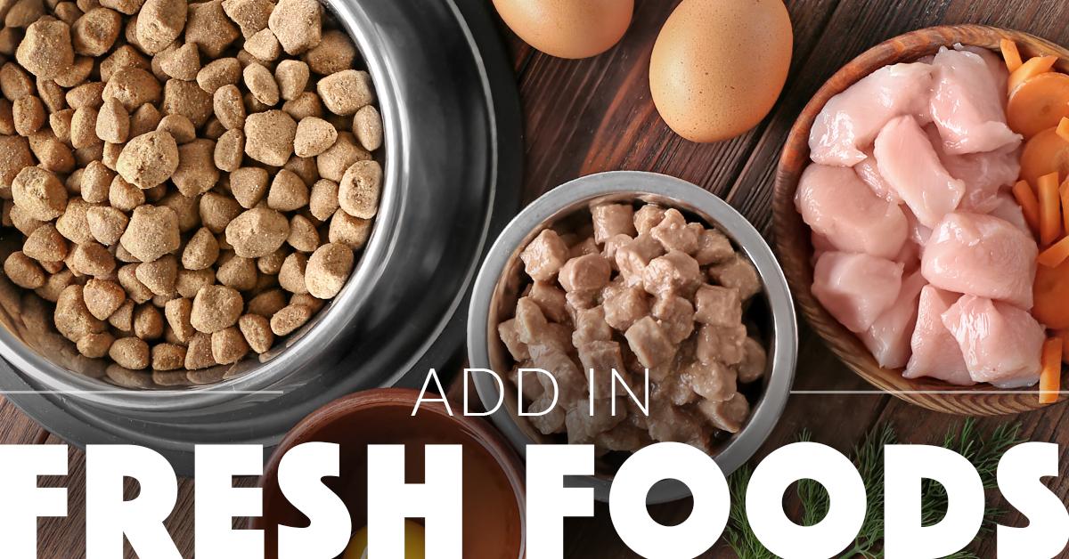 freshfoodsindogsdiet