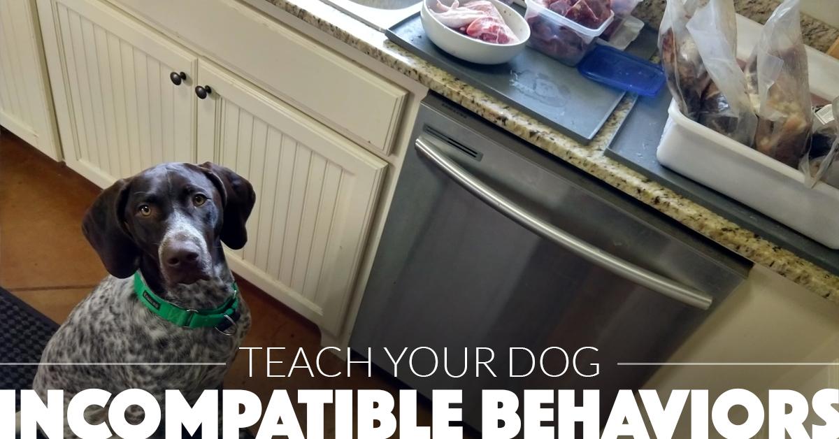 incompatiblebehaviors